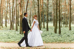 Bride and Groom on walk Stock Images