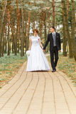 Bride and Groom on walk Royalty Free Stock Images