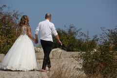 Wedding couple walking, back side. Bride and groom walking on the alley, hand in hand Royalty Free Stock Image