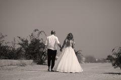 Wedding couple walking, back side. Bride and groom walking on the alley, hand in hand Stock Images