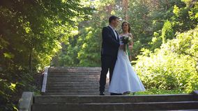 The Bride and Groom are Walking Along the Park Alley stock footage