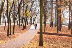 Bride and groom walking in the autumn park Royalty Free Stock Image