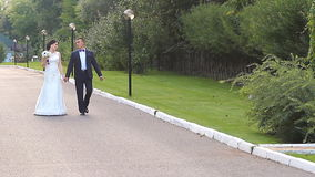Bride and groom walking away in summer park. Outdoors stock video