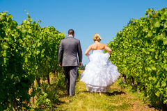 Bride and Groom Walking Away Stock Images
