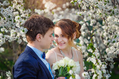Bride and groom walking in the blossoming spring garden Royalty Free Stock Photo