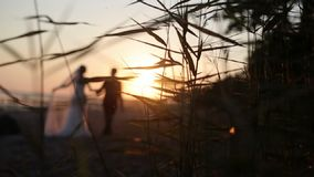 Bride and groom walking on a evening beach