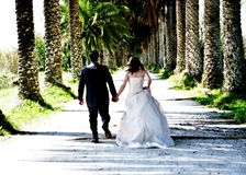 Bride and groom walking in farm Royalty Free Stock Photography