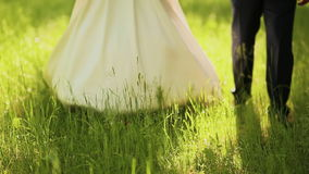 Bride and groom walking on the green grass stock video footage