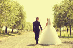 Bride and groom walking and holding hands Stock Image