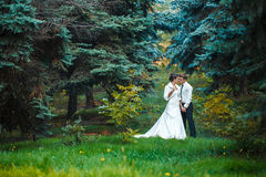 Bride and groom walking in nature summer. Bride and Groom at wedding Day walking Outdoors on spring nature. Bridal couple, Happy Newlywed women and men embracing Royalty Free Stock Image