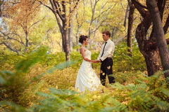 Bride and groom walking in nature summer. Bride and Groom at wedding Day walking Outdoors on spring nature. Bridal couple, Happy Newlywed women and men embracing Stock Photo