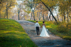 Bride and groom walking in nature summer. Bride and Groom at wedding Day walking Outdoors on spring nature. Bridal couple, Happy Newlywed women and men embracing Royalty Free Stock Images