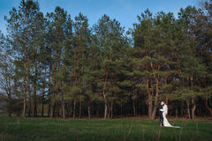 Bride and groom walking near pine forest on the wedding day Stock Photo