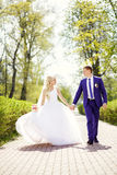 Bride and groom walking in the park holding hands Royalty Free Stock Photo