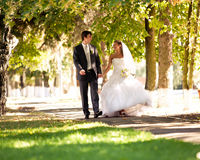 Bride and groom walking at park holding hands Royalty Free Stock Image