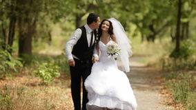 Bride and groom walking Stock Photography