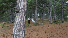 Bride and groom walking in the park, kissing stock video