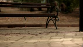 Bride And Groom Walking In Park stock video