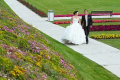 Bride and groom walking on pathway Stock Photography