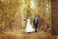 Bride and groom walking in summer park Stock Images