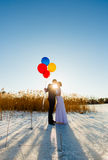 Bride and groom are walking at the surface of frozen lake Stock Photo