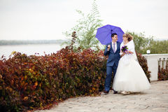 Bride and groom walking under umbrella Stock Photo