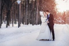 The bride and groom are walking at winter Park Royalty Free Stock Photo