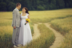 Bride and groom walks at nature Royalty Free Stock Photography
