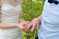 Bride groom wears wedding ring on nature Stock Image