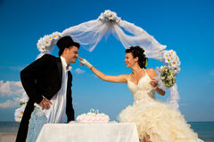 Bride and Groom with wedding cake Royalty Free Stock Images