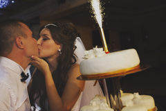 Bride and Groom with wedding cake Royalty Free Stock Photos