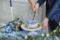 Bride and groom at wedding cutting the  cake Royalty Free Stock Photos