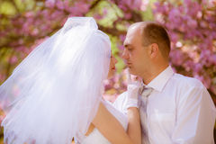 Bride and groom on a wedding day Royalty Free Stock Photography