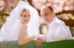 Bride and groom on a wedding day Stock Image