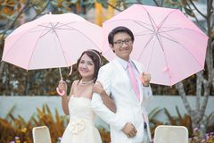 Bride and Groom. Wedding day Royalty Free Stock Photo