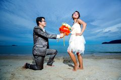 Bride and Groom. Wedding day by the sea Royalty Free Stock Photo