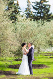 Bride and Groom at wedding Day walking Outdoors on Stock Photos