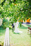 Bride and groom at wedding Day walking Outdoors on spring nature royalty free stock image
