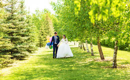 Bride and Groom at wedding Day walking Outdoors on spring nature. Bridal couple, Happy Newlywed woman and man embracing Royalty Free Stock Image