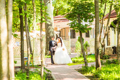 Bride and Groom at wedding Day walking Outdoors on spring nature. Bridal couple, Happy Newlywed woman and man embracing. Bride and Groom at wedding Day walking royalty free stock photo