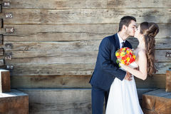 Bride and groom in wedding photo. Just married couple Stock Photos