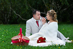 Bride and groom on wedding picnic Stock Images