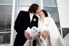 Bride and groom with wedding pigeons Stock Photos