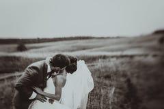 Bride and groom wedding portraits Stock Photos