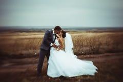 Bride and groom wedding portraits Royalty Free Stock Photo