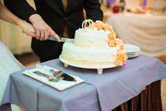 Bride and Groom at Wedding Reception Cutting Stock Photos