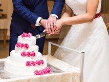Bride and Groom at Wedding Reception Cutting the Cake Royalty Free Stock Photos