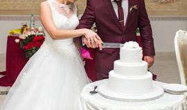 Bride and Groom at Wedding Reception Cutting the Cake Royalty Free Stock Photography