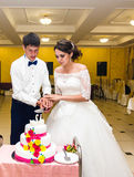 Bride and Groom at Wedding Reception Cutting the Cake Stock Image