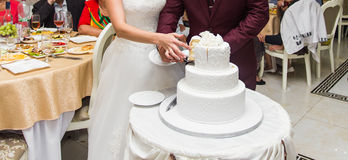 Bride and Groom at Wedding Reception Cutting the Cake Stock Photography